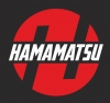 Хамамацу моторс