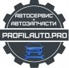 Profilauto